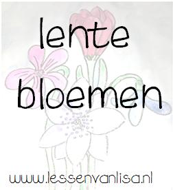 Lessen Van Lisa Tekenen